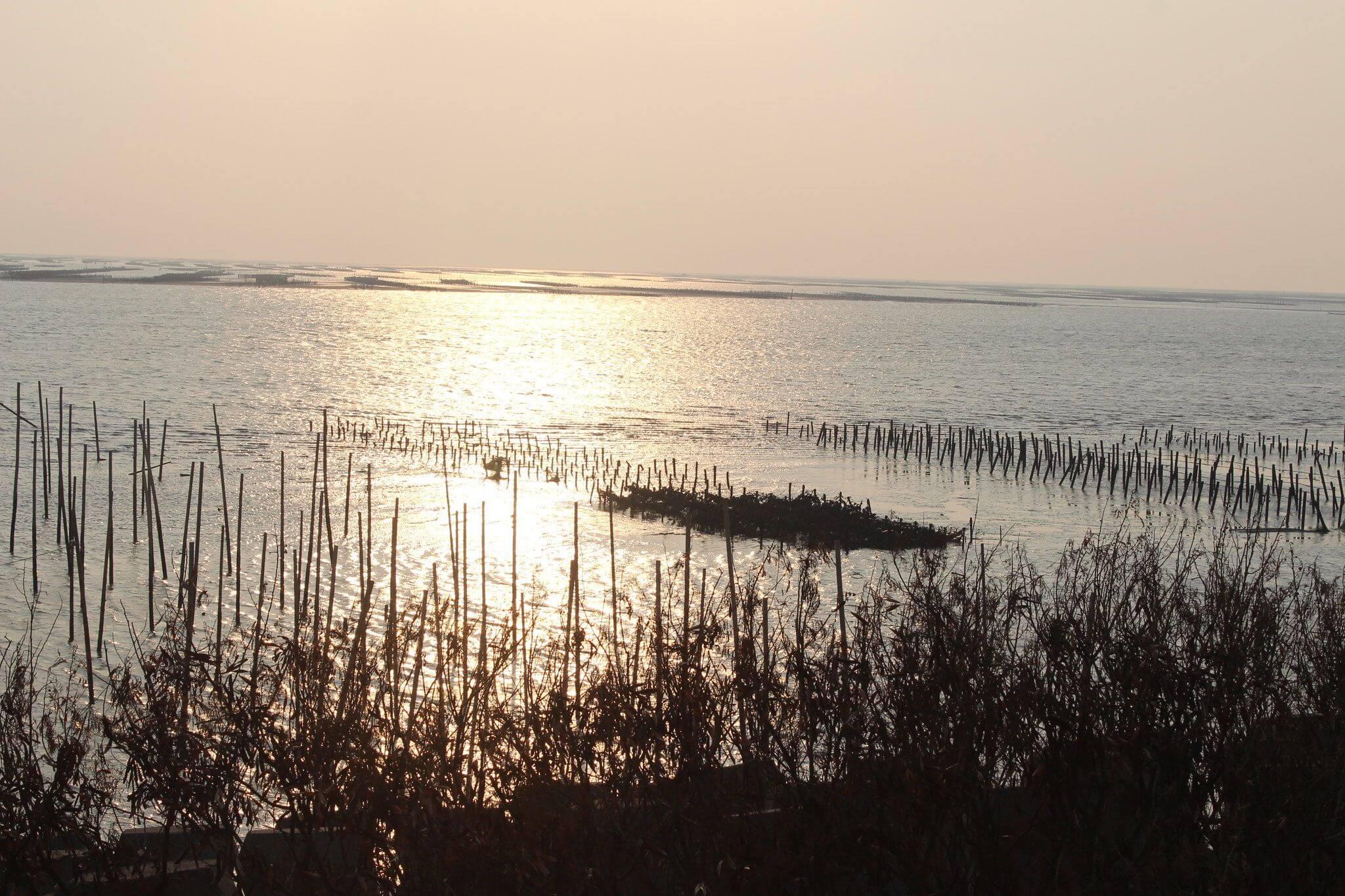 環境保護公益信託於濕地經營管理之應用(四)