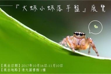 「大蛛小蛛落芋盤」展覽資訊