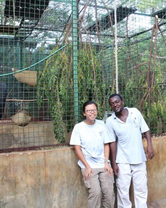 東非保育行