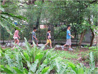 親子參與,從實做中學習永續校園生態營造