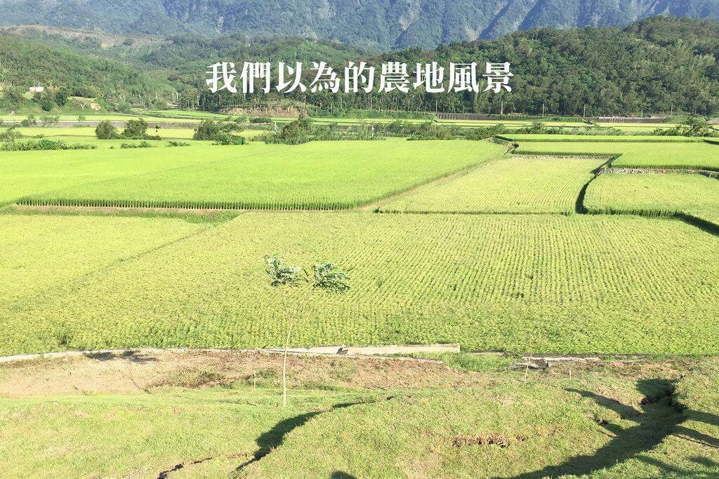 我們的願望,是農地上沒有工廠