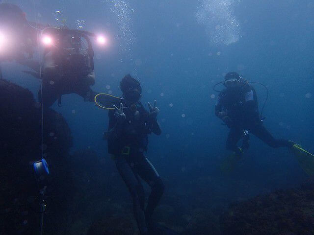 2015番仔澳珊瑚礁體檢成果