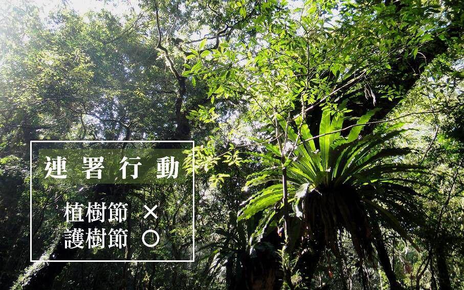 要求政府將「植樹節」改為「護樹節」 並落實...