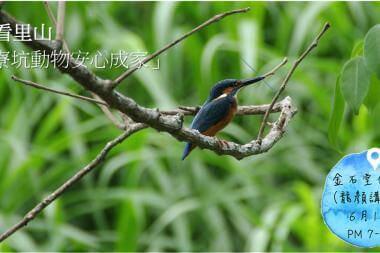 鳥看里山:「鹿寮坑動物安心成家」台北分享會