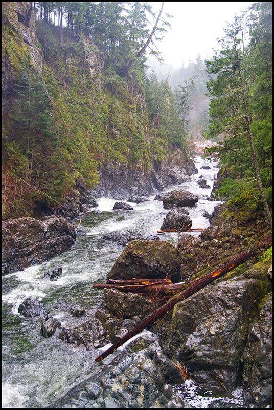 加拿大TLC 建立多元參與環境信託的管道