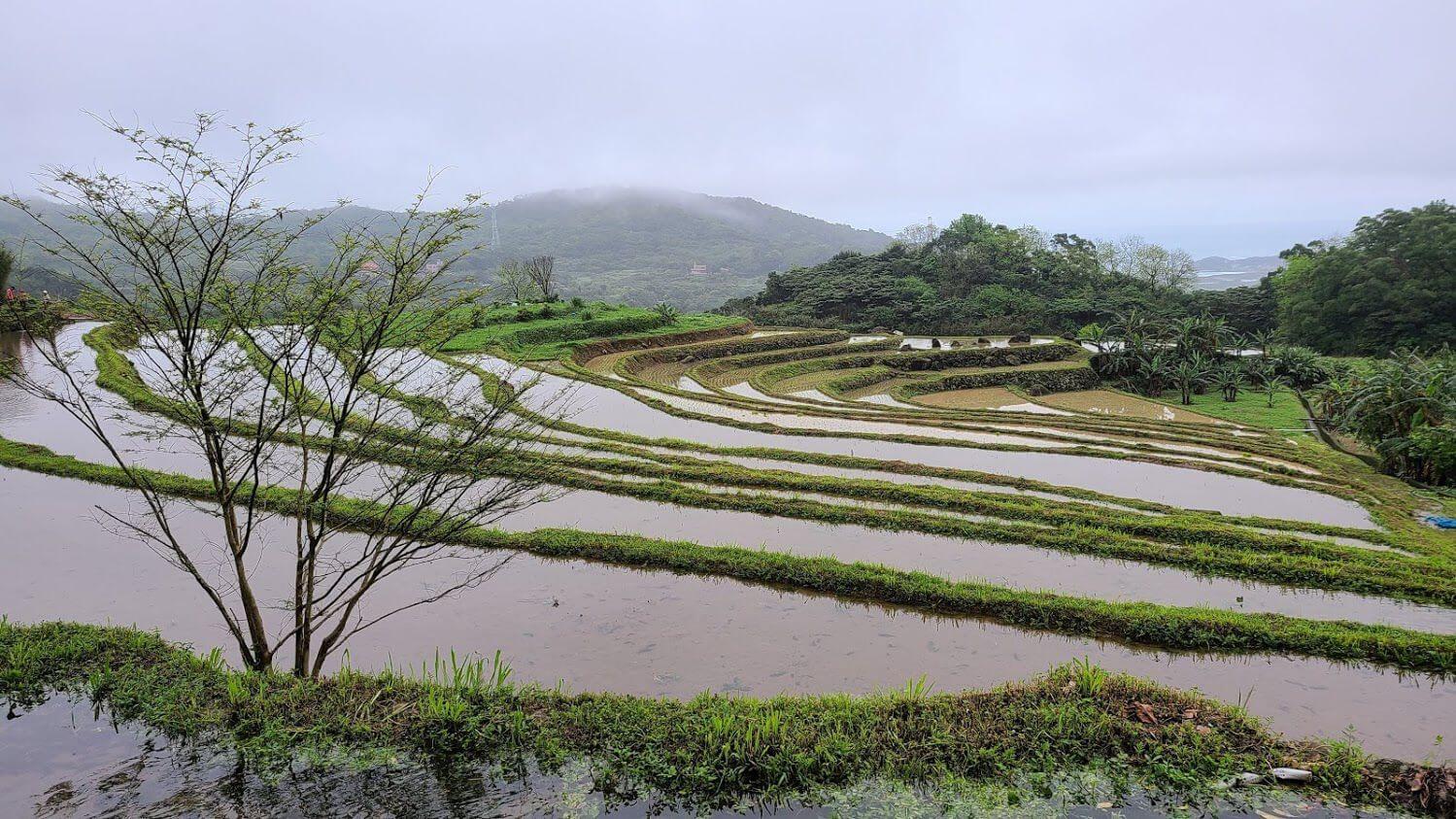 支持在地小農與生態保育的「社區土地信託」(...
