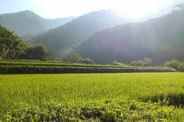 【見學日記】山的另一端,來去吉拉米代訪梯田...