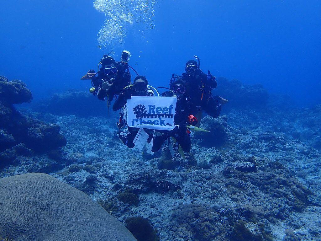 2020 綠島珊瑚礁體檢成果報告
