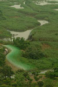 保護棲地 環保團體致力推動環境信託