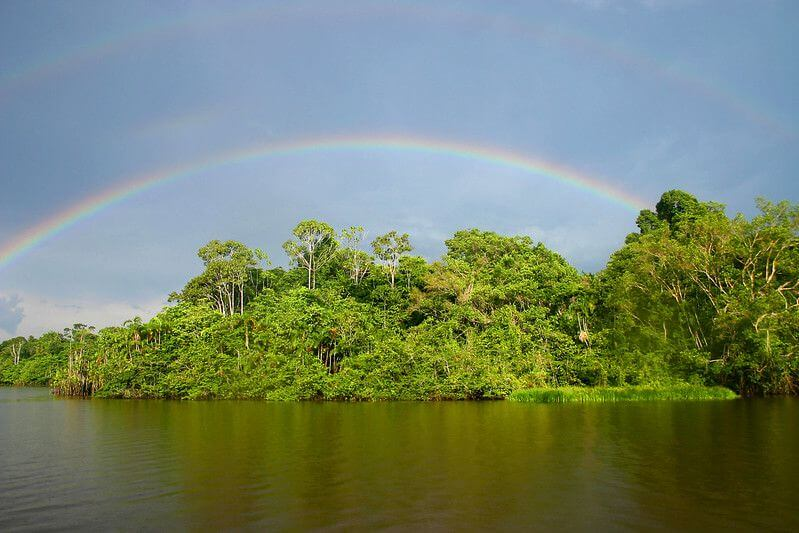 厄瓜多成立信託基金 為公園停止開採石油