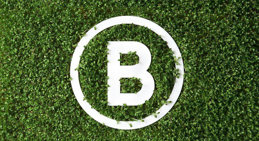 綠藤生機減法潔淨用品 | 永續,從少一點開...