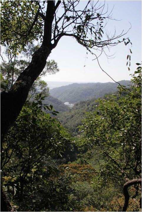 地主捐地做環境教育 自然谷寫下環境信託新例