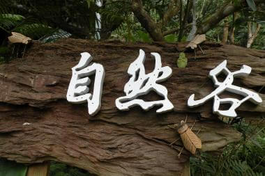 青年壯遊 自然谷徵山林守護者