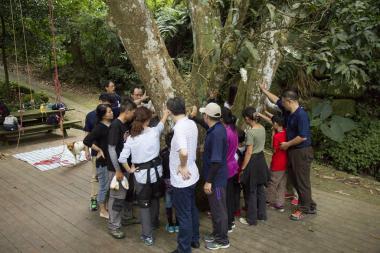 攀上大樹 伊頓飛瑞慕品志工體驗森林新面貌
