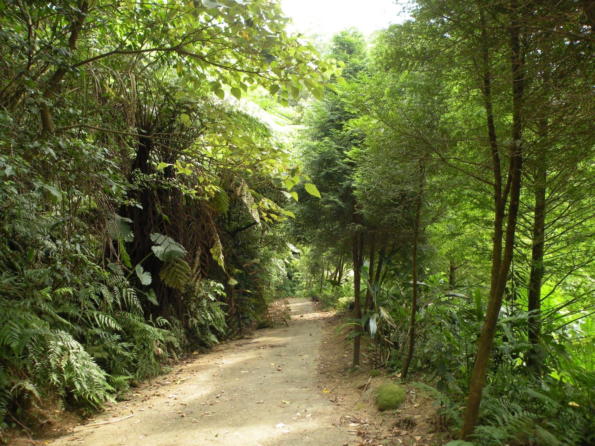 青年封面故事:青年壯遊點-自然谷,台灣的第...