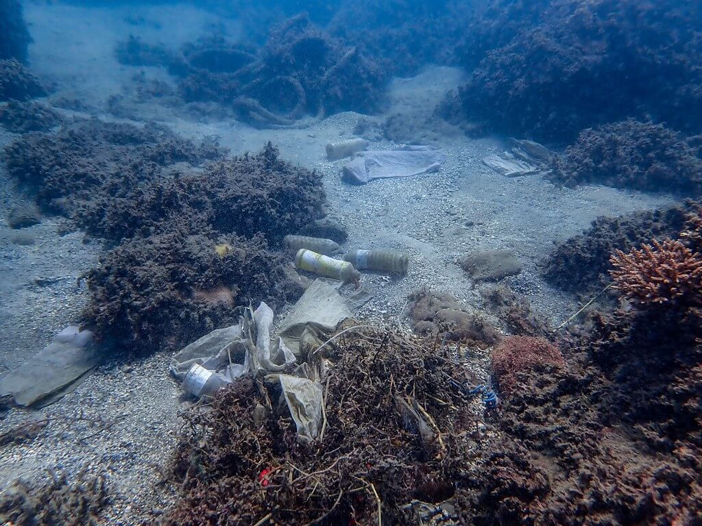 台東基翬可見海底垃圾遍佈(圖片來源:莊子毅)