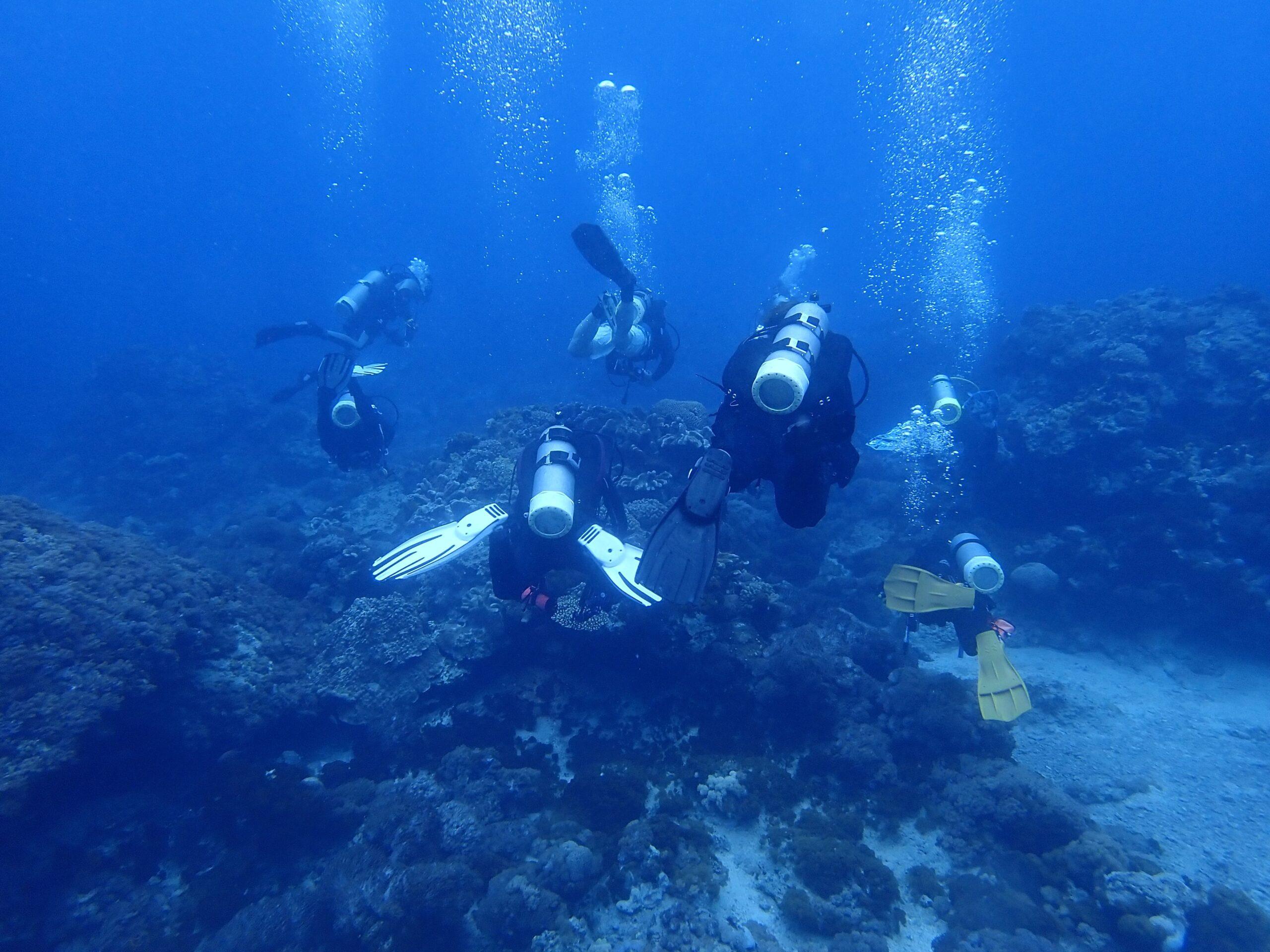 2021 綠島珊瑚礁體檢報告